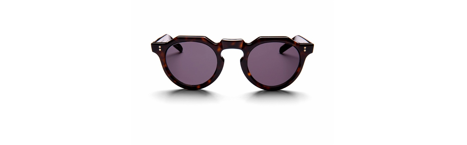 jamboree sunglasses los angeles dark tortoise